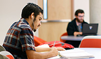 photo students studying on campus